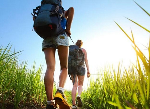 生命在于运动!原来这几种运动能让你多活30年 - 展望曙光 - 展望曙光!