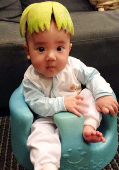 照片中,可爱的小家伙睁着大大的眼睛,头顶着柚子皮,呆萌的表情萌翻
